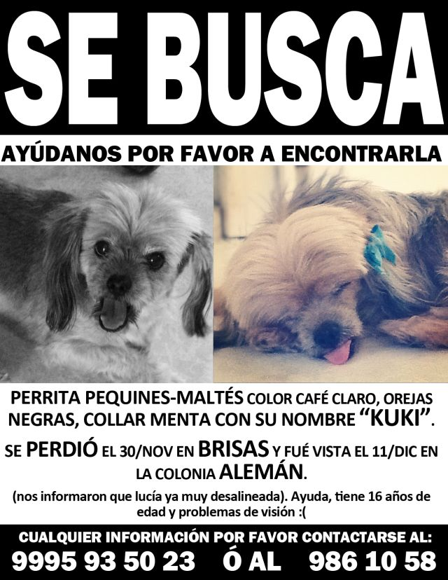 se busca2color